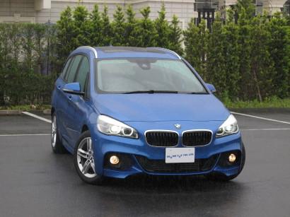 BMW2GT0013.jpg